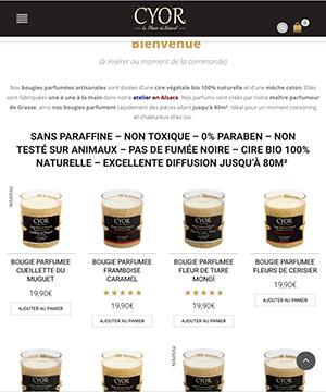 création site e-commerce tablette Mulhouse Agence web Alsace